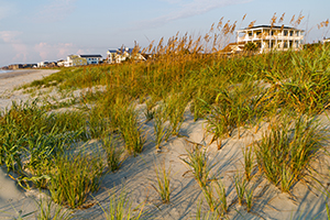 Isle of Palms SC homes for sale