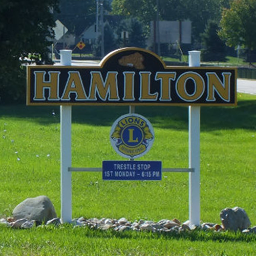 Hamilton MI Homes for Sale